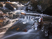 water from a brook at kent pond splashes and freezes onto fallen tree branches, as the flow passes by, mendon, vermont