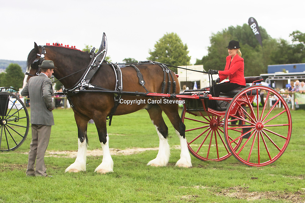 Helen Carr driving Eversley Shires' Walton Bomber<br />
