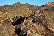 Spiral petroglyph at Signal Hill in the Tucson Mountain District of Saguaro Nattional Park, Arizona
