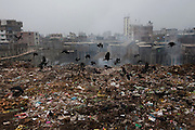 Birds scavenge a landfill in a slum settlement in the Chairman District, next to the leather factories in Dhaka, Bangladesh.