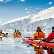 Kayakers in calm waters at Neko Harbour, Antarctica.