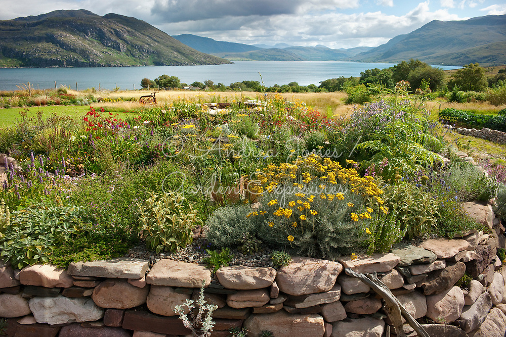 Raised bed with herbs and dry loving plants loooking towards Little Loch Broom. 2 Durnamuck, Little Loch Broom, Wester Ross, Scotland