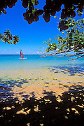 Windsurfing the blue Pacific waters at Anini Beach, North Shore, Kauai, Hawaii