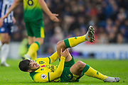 Emiliano Buendia (Norwich) injured during the Premier League match between Brighton and Hove Albion and Norwich City at the American Express Community Stadium, Brighton and Hove, England on 2 November 2019.