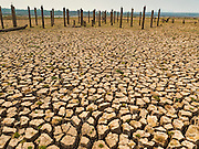 31 MARCH 2016 - NA SAK, LAMPANG, THAILAND: The ruins of a village poke out of the dried mud in the bottom of the Mae Chang Reservoir. The Mae Chang Reservoir in Lampang province was created more than 30 years ago when the Chang River was dammed. Five villages along the river were relocated to hillsides above the river. For the first time since it was flooded, the reservoir is nearly empty and the ruins of the old villages are visible. Many people who remember the old villages are coming down to the ruins to visit them. This part of Thailand hasn't received significant rain in months and many irrigation canals and streams are running dry.    PHOTO BY JACK KURTZ
