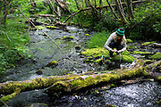 Syndey Kaufman washes dishes in a creek during a backpacking trip in the Hoh Rainforest in Olympic National Park, Washington, June 1, 2015. (Photo by David Lienemann)