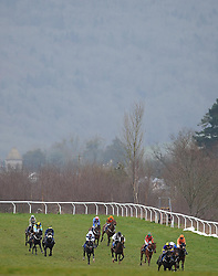 Runners make their way down the back straight during the Red Berry Recruitment Ltd Handicap Hurdle (Class 5) (4YO plys)  - Photo mandatory by-line: Harry Trump/JMP - Mobile: 07966 386802 - 09/03/15 - SPORT - Equestrian - Horse Racing - Taunton Racing - Taunton Racecourse, Somerset, England.
