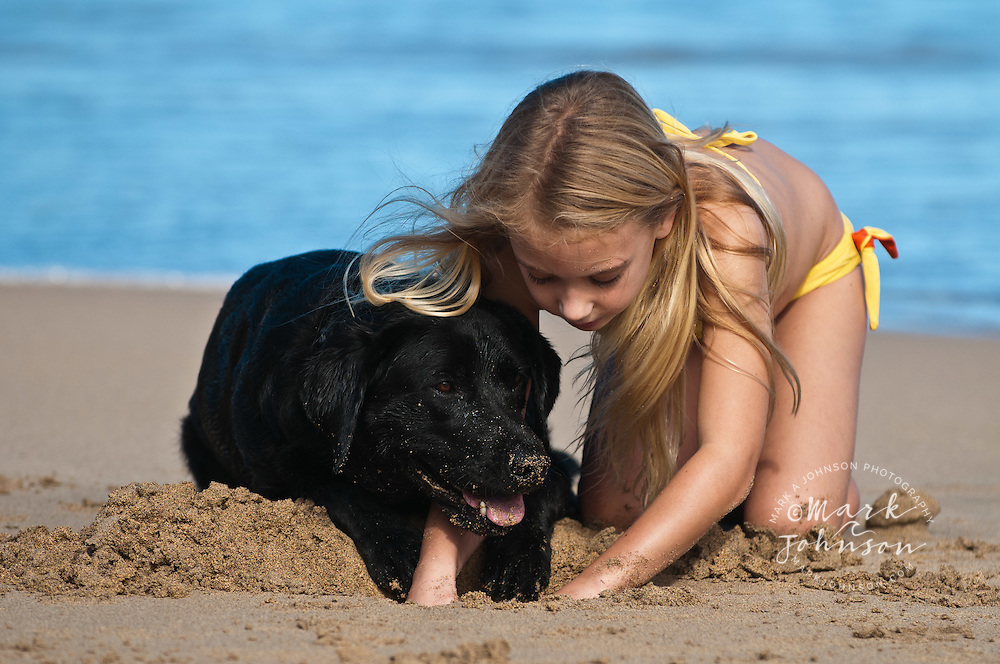 6 year old girl playing with her black labrador retriever dog at the beach, Kauai, Hawaii