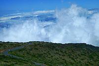 Descending Haleakala Volcano, Makawao, Maui