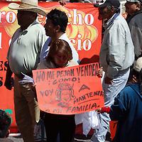 Toluca, México.- Alrededor de 700 integrantes del Movimiento Antorchista se manifestaron en la ciudad de Toluca, exigiendo cesen los operativos en su contra, y les permitan trabajar en las calles como lo habían venido realizando desde tiempo atrás.  Agencia MVT / Crisanta Espinosa