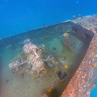Caribbean, Barbados, Carlisle Bay. Shipwrek intentionally sunk in Carlisle Bay to form artificial reef.