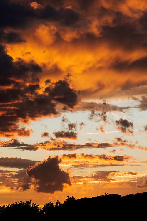 ITALY, Bolgheri (LI)<br /> Bolgheri sunset
