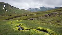 Small stream with green moss on sides. Húsavíkurheiði, East Iceland.