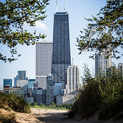 Picture of Chicago city and Hancock building viewed through trees and sand. The John Hancock Center building is one of the world's tallest skyscrapers and is a famous fixture in the Chicago skyline. Photo is vertical, high resolution and was taken in 2012.
