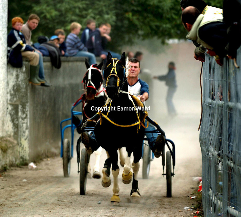 Ballinasloe Horse Fair........Europe's oldest Horse Fair draws the crowds to Ballinasloe,Co Galway,Ireland in the first week of October. Photograph by Eamon Ward