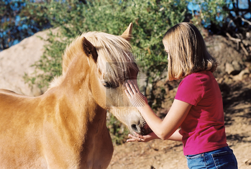 Young girl petting horse while feeding it a treat