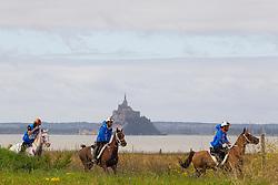 Jaume Punti Dachs, (ESP), Novisaad D Aqui<br /> Alltech FEI World Equestrian Games™ 2014 - Normandy, France.<br /> © Hippo Foto Team - Leanjo de Koster<br /> 25/06/14