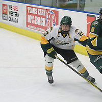 3rd year defence man Tamara McVannel (23) of the Regina Cougars in action during the Women's Hockey home game on January 20 at Co-operators arena. Credit: Arthur Ward/Arthur Images