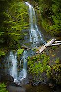 Waterfall along Stevens Canyon Road - Mt. Rainier National Park, WA
