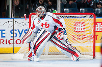 KELOWNA, CANADA - OCTOBER 31: Jayden Sittler #33 of the Lethbridge Hurricanes defends the net against the Kelowna Rockets on October 31, 2015 at Prospera Place in Kelowna, British Columbia, Canada.  (Photo by Marissa Baecker/Shoot the Breeze)  *** Local Caption *** Jayden Sittler;