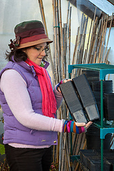 Tidying pots in the greenhouse before winter