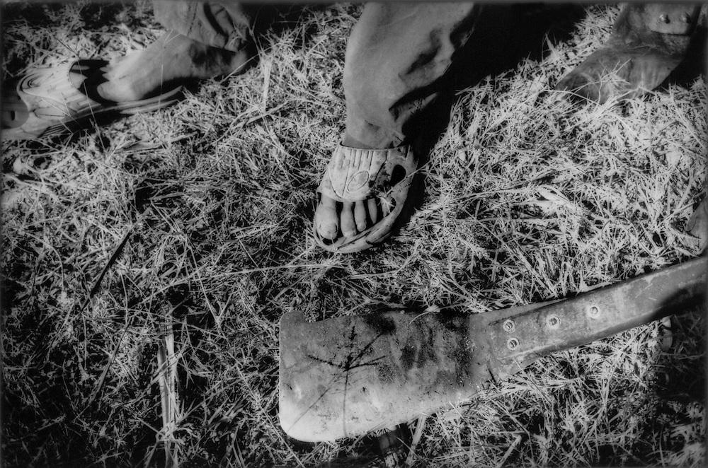 Haitian sugar cane cutter's, Wasan's, slippered feet and machete in the fields near Barahona, Dominican Republic.