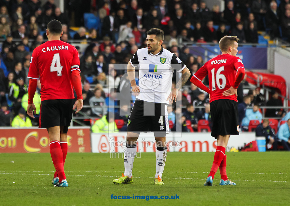 Picture by Tom Smith/Focus Images Ltd 07545141164<br /> 01/02/2014<br /> Bradley Johnson (centre) of Norwich City during the Barclays Premier League match at the Cardiff City Stadium, Cardiff.