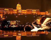At the banks of Donau, from the Pest side with views of the Buda Castle which is located on the Buda side - Ved Donaus bredder, fra Pest-siden med utsikt mot Buda-slottet som ligger på Buda-siden..Mirror image of a lady who sits in the hotel roome bed and looking at Buda Castle on the Danube bank in Budapest....Speilbilde av dame som sitter i en hotellseng og ser mot Buda-slottet ved Donaus bredd i Budapest..........