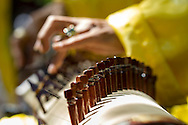 Detail of a hand playing on a traditional string instrument. Tao Dan Park, Ho Chi Minh city, Vietnam, Southeast Asia