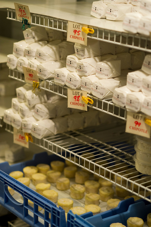 Cheeses on shelf