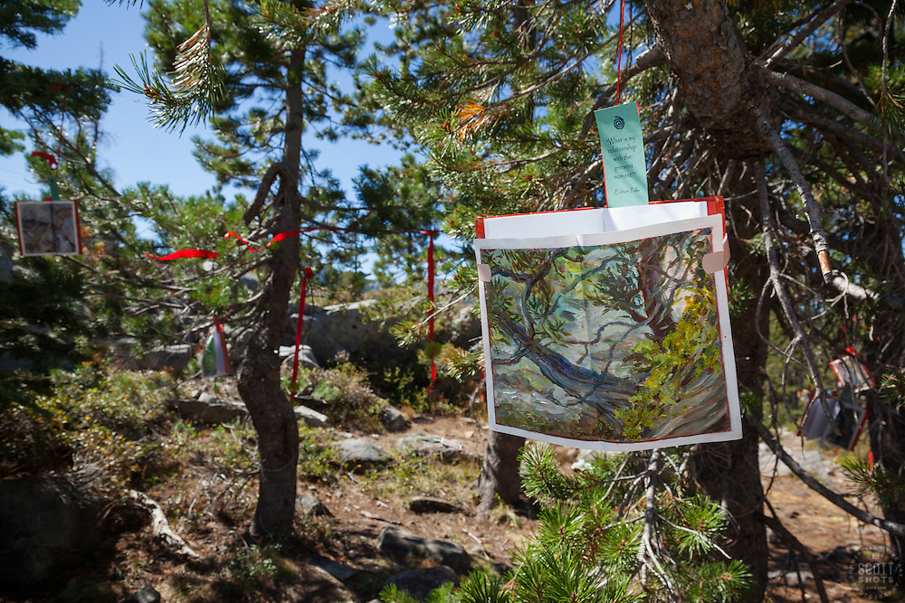 """""""Trails and Vistas 4"""" - Photograph from the 2012 Trails and Vistas - The Dreaming Tree."""