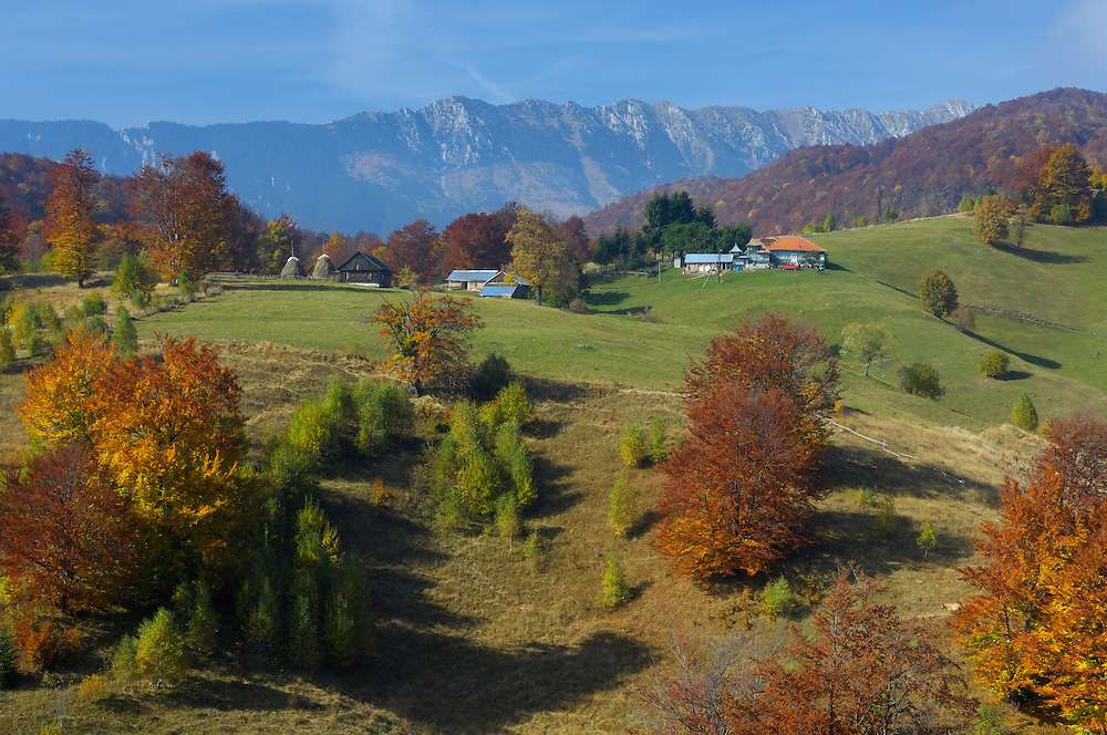 Cultural landscape and Piatra Craiului Mountains, Piatra Craiului National Park, Transylvania, Southern Carpathians, Romania