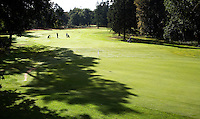 BEETSTERZWAAG -   Green Hole 8. Golf & Country Club Lauswolt .   Copyright Koen Suyk