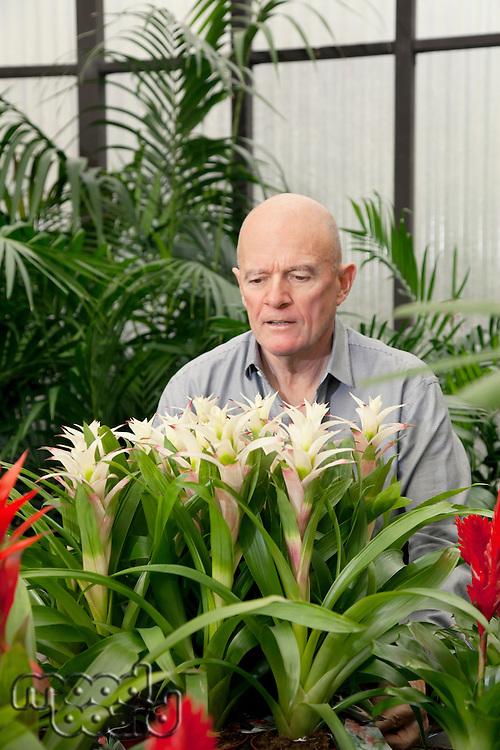 Senior man in botanical garden center
