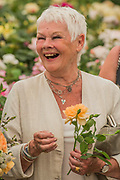 Jame Judy Dench is given a rose named after her on the David Austin Roses Stand - The Chelsea Flower Show organised by the Royal Horticultural Society with M&G as its MAIN sponsor for the final year.