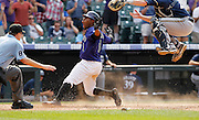 Colorado Rockies' Eric Young Jr. slides home on a two-run double by Tyler Colvin in the bottom of the ninth inning past the tag of Milwaukee Brewers' Jonathan Lucroy, winning the game 7-6 and completing the series sweep at Coors Field in Denver on Wednesday, Aug. 15, 2012.