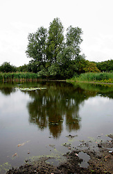 UK ENGLAND CAMBRIDGESHIRE WICKEN 7AUG06 - Low level of water in a lake surrounding an island called The Mere in the Wicken Fen National Nature Reserve, managed by the National Trust is one of Britain's oldest nature reserve dating back to the late 1800s...jre/Photo by Jiri Rezac..© Jiri Rezac 2006..Contact: +44 (0) 7050 110 417.Mobile:  +44 (0) 7801 337 683.Office:  +44 (0) 20 8968 9635..Email:   jiri@jirirezac.com.Web:    www.jirirezac.com..© All images Jiri Rezac 2006 - All rights reserved.