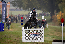 Van Der Goes-Petter Willemina, NED, Fulco<br /> World Championship Young Eventing Horses<br /> Mondial du Lion - Le Lion d'Angers 2016<br /> © Hippo Foto - Dirk Caremans<br /> 22/10/2016