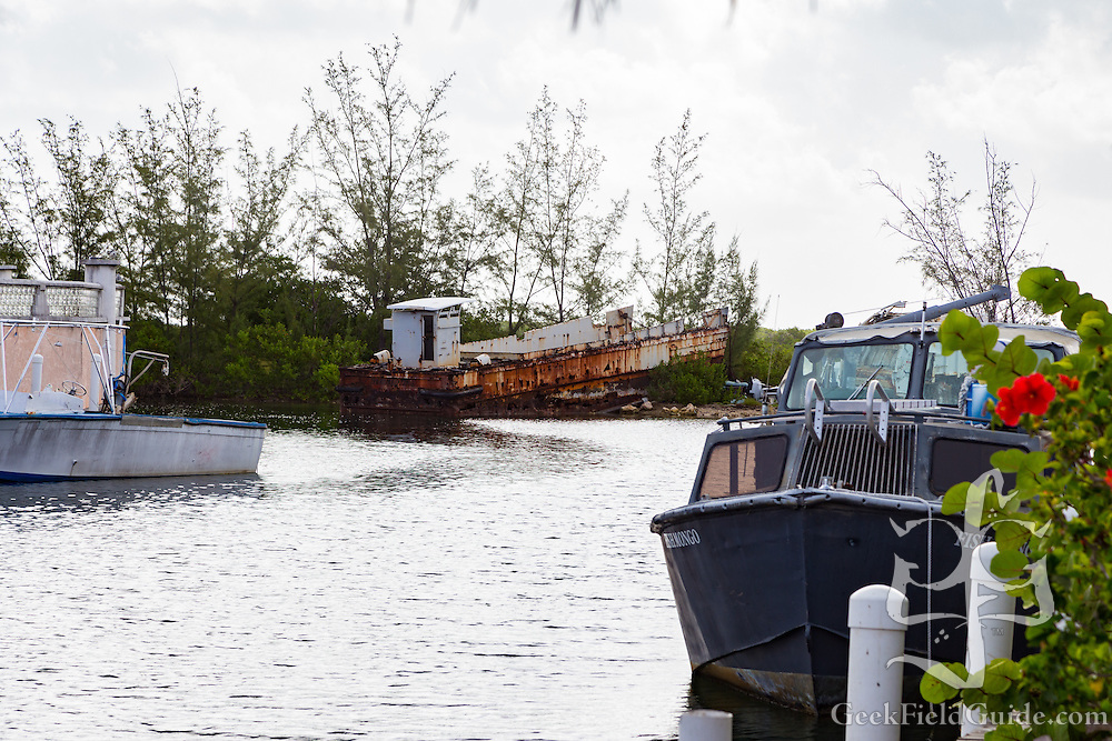 LCM-3 Landing Craft, left to rust in Bimini