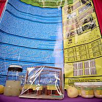Toluca, México.- 614 estudiantes, expondrán 267 proyectos en la Feria Mexicana de Ciencias e Ingenierías 2014, dentro de las disciplinas de Ciencias Sociales, Ciencias Exactas, Ciencias Naturales y Ambientales, Medicina y Salud, e Ingeniería y Computación,  contando con la participación de delegaciones de Perú, Chile y Colombia. Agencia MVT / Crisanta Espinosa
