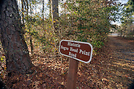 """Negro Head Point Road, which ran by the Moore's Creek Battlefield in what is now Pender County, North Carolina. Point Peter, at the junction of the Cape Fear and Northeast Cape Fear rivers, was known as """"Negro Head Point"""" prior to 1780. At Moores Creek National Battlefiled Patriots won the first decisive battle of the American Revolution on February 27, 1776."""