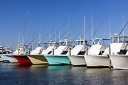 NC00834-00...NORTH CAROLINA - Fishing boats lined up in Hatteras Harbor Marina along the Outer Banks.