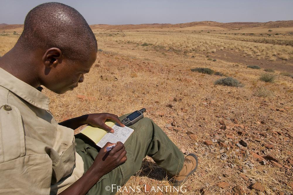 Field scout recording desert black rhino data, Save the Rhino Trust, Palmwag, Torra Conservancy, Damaraland, Namibia