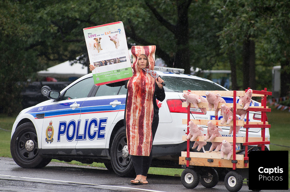 Lexy Scott stands dressed as bacon brandishing a fake bloody knife while protesting outside Baconpalooza. September 12, 2015. Captis Photos/Brendan Montgomery