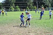 Playoffs - GU12 Gold  Kitsap Alliance FC G03A v FPSC Fury G03 White