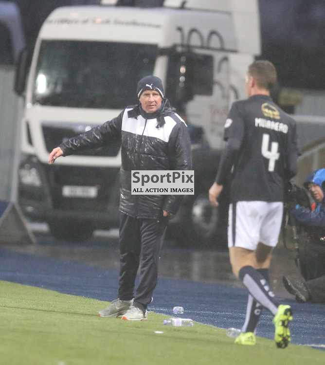 Peter Houston gives instruction during the Falkirk v Dumbarton  Scottish Championship  26  December 2015 <br /> <br /> (c) Andy Scott   SportPix.org.uk