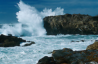 USA California Point Lobos waves splashing on rocks at Pacific coast