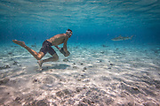 Matt Poole trains by carrying rocks underwater in Bora Bora, a popular island in French Polynesia (the Tahitian Islands.)