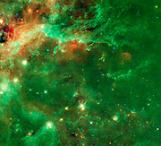 NASA's WISE captured this image of a huge complex of star-forming clouds and stellar clusters found in the constellation Cygnus.
