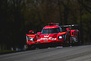 May 4-6 2018: IMSA Weathertech Mid Ohio. 31 Whelen Engineering Racing, Cadillac DPi, Eric Curran, Felipe Nasr